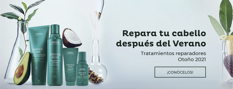 Wappetea_Slider_Reparador_Aveda-1
